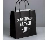 Пакет подарочный «Всем плевать на твой др»