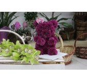 Мишка Teddy из живых цветов